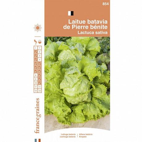 France graines laitue batavia pierre bénite
