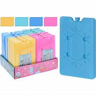 Lot de 2 blocs réfrigérants