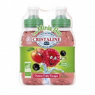 Cristaline pomme fruits rouges 4x20cl