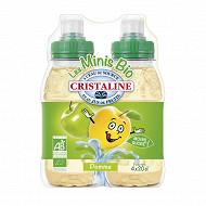 Cristaline eau de source pomme bio - 4x20cl