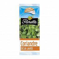 Florette coriandre 11g