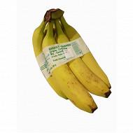 Banane 6 doigts