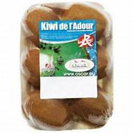Kiwi Hayward Label Rouge la barquette de 6 fruits