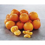 Mandarine Orri
