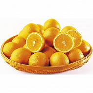 Orange à déguster