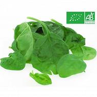 Salade jeune pousse bio épinard
