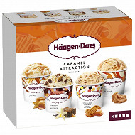 Haagen dazs mini pot obsession caramel collection 4X95ML - 321g