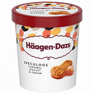 Haagen dazs obsession collection biscuit cream & speculoos pot 460ML/400G