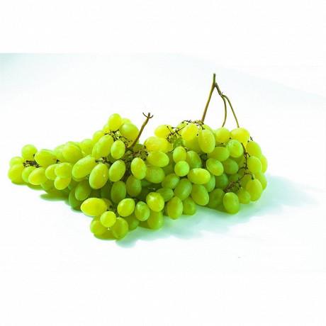 Raisins aledo