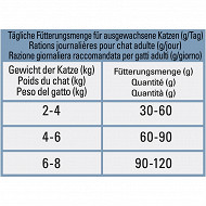 Beyond chat grain free saumon 1.2kg