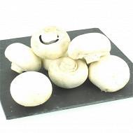 Champignon blanc barquette 500 g
