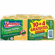 Spontex gratte-éponges stop bactéries 10+4
