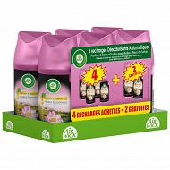 Air wick recharge fresh'matic rare fleur 4+2offertes