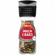 Ducros moulin 5 baies doux 26g