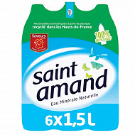 Saint Amand eau minérale naturelle pack  6 x1,5l