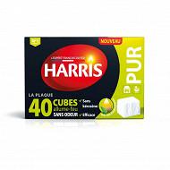 Harris 40 cubes allume feu sans odeur pur