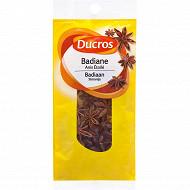 Ducros sachet badiane 25g