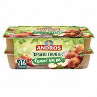 Andros dessert de pomme nature 16x100g