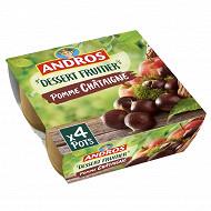 Andros spécialité de pommes et de châtaignes 4x100g