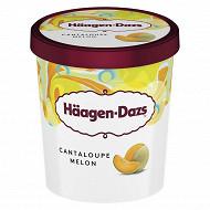 Haagen-dazs pot cantaloupe melon 400g