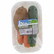 Mélange légumes bio barquette 1kg