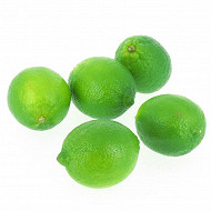 Citron vert filet 500g