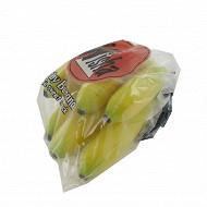 Banane frecinette sachet 270g