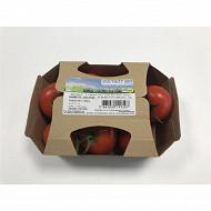 Tomate grappe bio barquette 500g