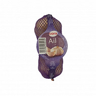 Ail blanc 3 tetes cat 1. 60/80 cora le filet