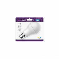 Getic ampoule LED standard equivalent 100W B22