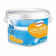 Chlore multifonction 20g en boîte de 2.5kg