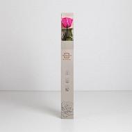 Rose naturelle stabilisée nouvelle couleur électrique fuchsia