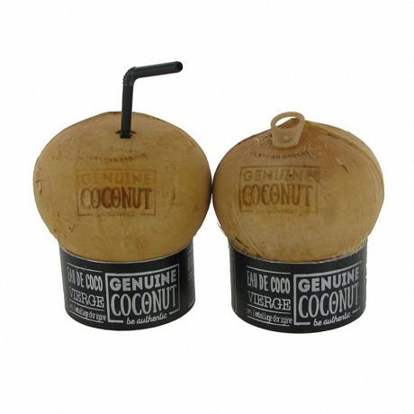 Coconut à boire bio 300ml