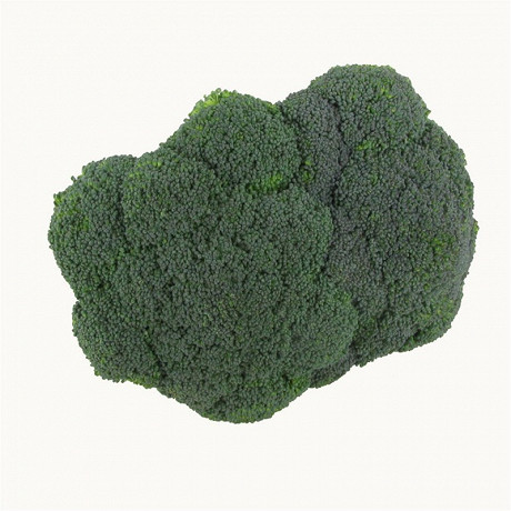 Chou bio brocoli barquette 500g