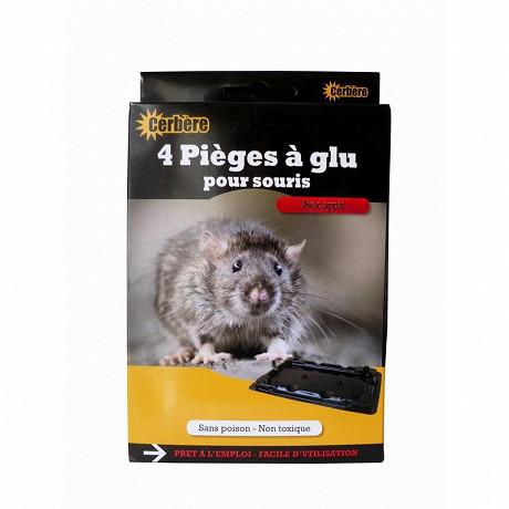 Boite de 4 pièges à glu pour souris