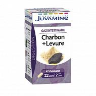 Juvaflorine charbon + levure gaz intestinaux 45 gélules 15g
