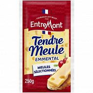 Entremont emmental français 45%mg 250g