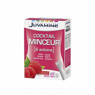 Juvamine cocktail minceur 6 actions 14 sticks 47g