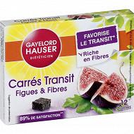 Gayelord hauser carré transit x12 120g