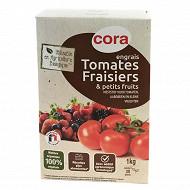 Cora engrais AB tomates-fraisiers-petits fruits 1kg