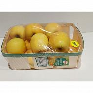 Cora pomme golden AOP limousin en panier de bois 1,5 kg