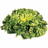 Salade scarole la pièce