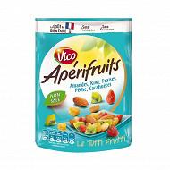 Vico apérifruits mélange cacahuètes et fruits 120g