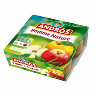 Andros dessert fruitier pomme nature 4 x 100g