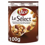 Vico mélange Le sélect 100g doy pack