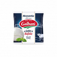 Galbani mozzaralla di latte di bufala boule 125 g