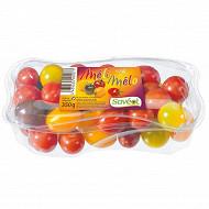 Saveol méli-mélo tomate cerise barquette 350g
