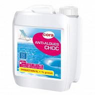 Anti-algues choc 5+1l offert