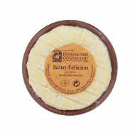 Saint félicien coupelle grès Patrimoine gourmand 330g
