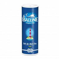 La baleine salière sel fin 250g